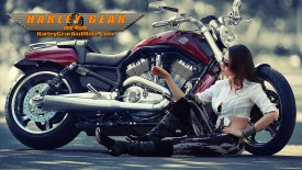 Harley Davidson Motorcycle Gear and More Wallpaper number 17