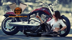 Harley Davidson Motorcycle Gear and More Wallpaper number 7